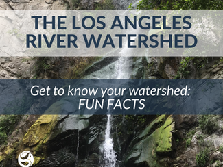 #SummerScienceFriday | Get To Know Your Watershed!