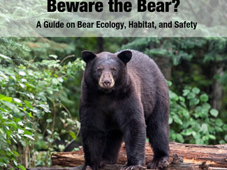 #SummerScienceFriday | Beware the Bear?