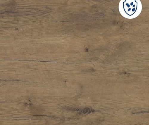 pale-lancelot-oak.jpg
