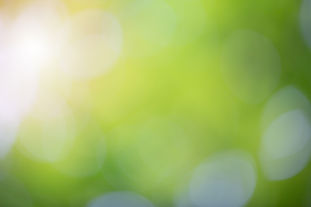 green-bokeh-nature-blur-background-eleme