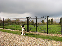 Estate railing double gate 2