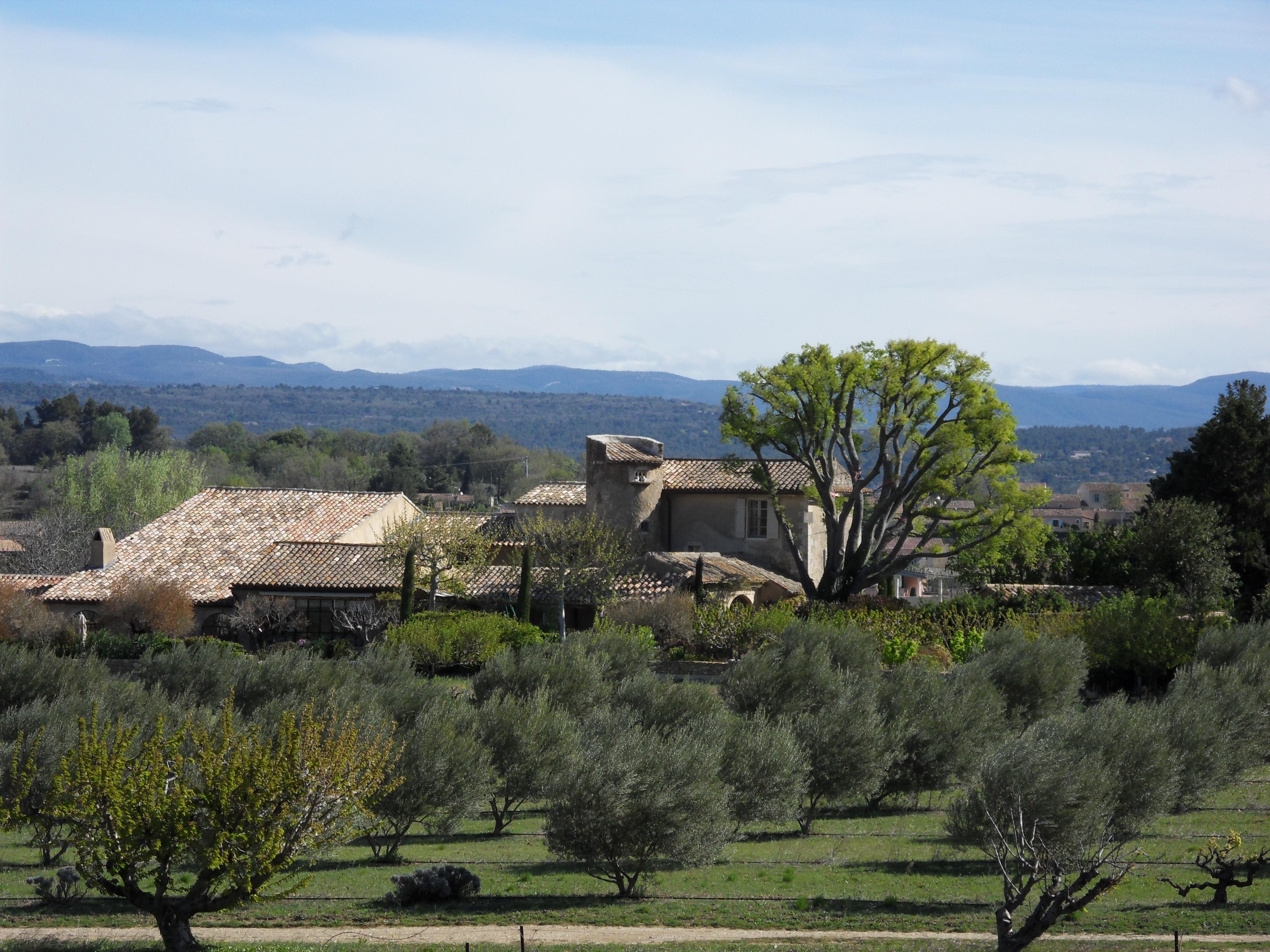 Vue de la chambre Monts de Vaucluse