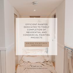 Amiras Painting Services