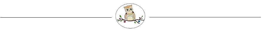 Medicine Hat Little Owl Learning Centre Logo