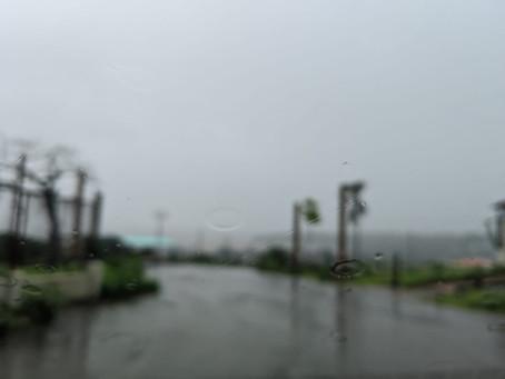 Really? It was Raining in January? In Goa?