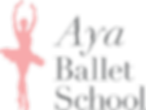 aya_Logo_edited.png