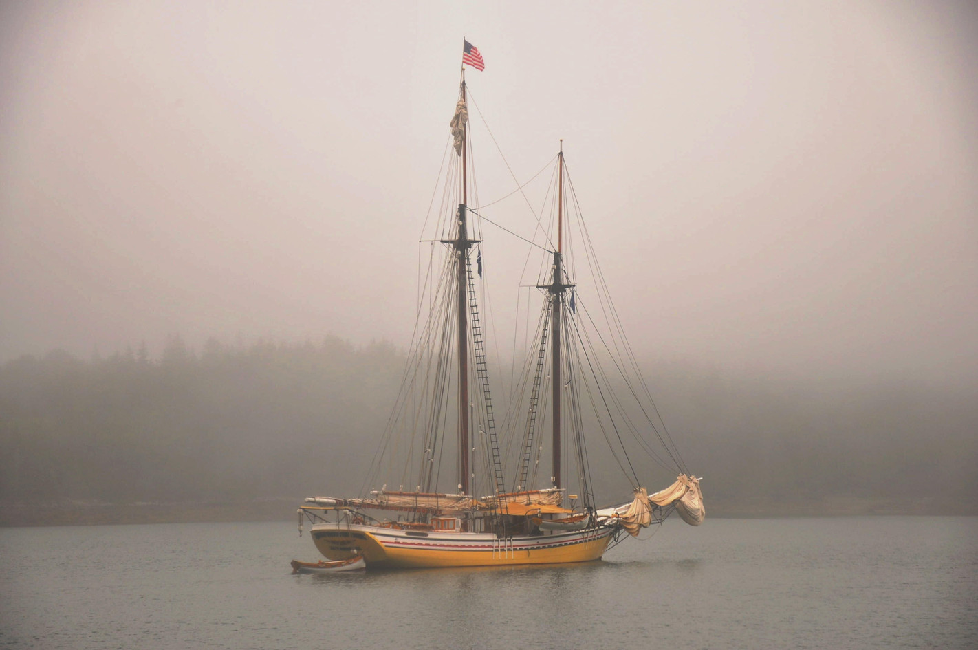 Heritage at anchor in the fog. Photo: Lydia Rolita