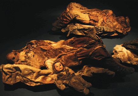Antropológia - csontba írt történelem