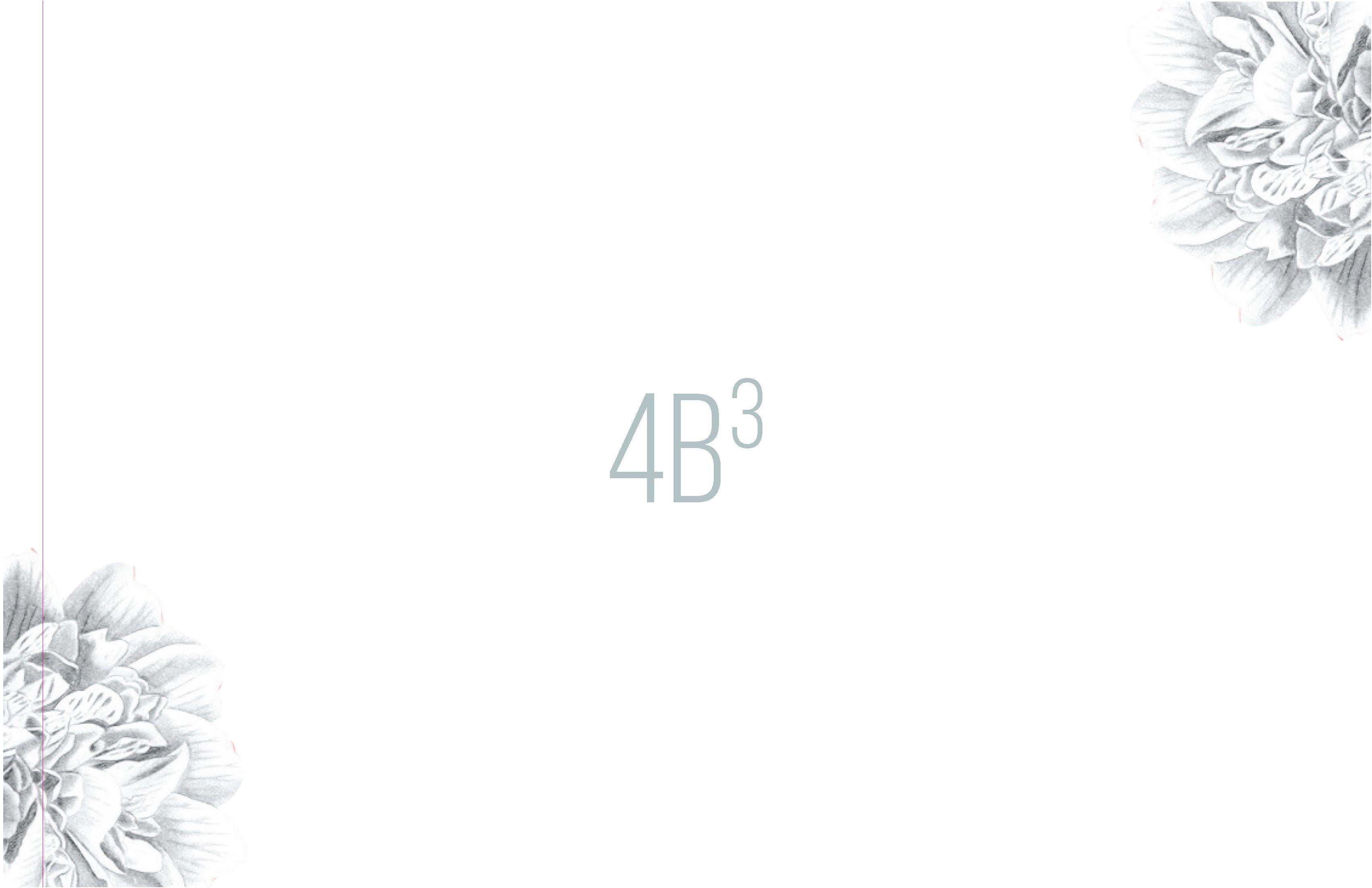 4B3 LOOKBOOK