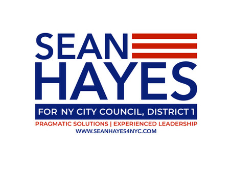 Sean Hayes, Candidate for City Council, Quoted in the Gotham Gazette