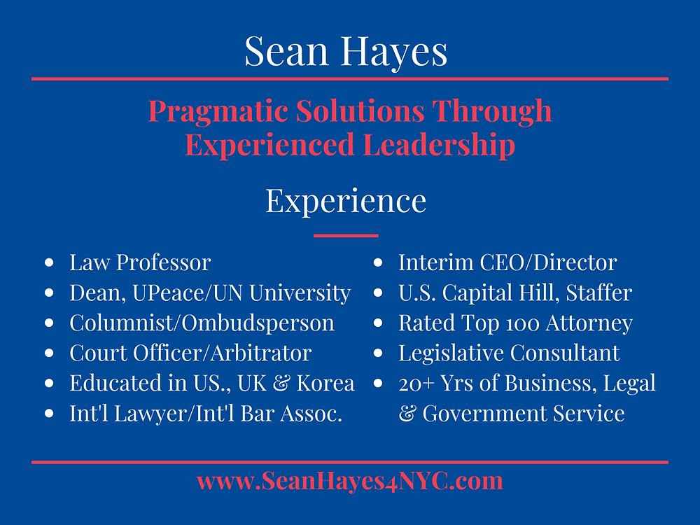 Sean Hayes Experience