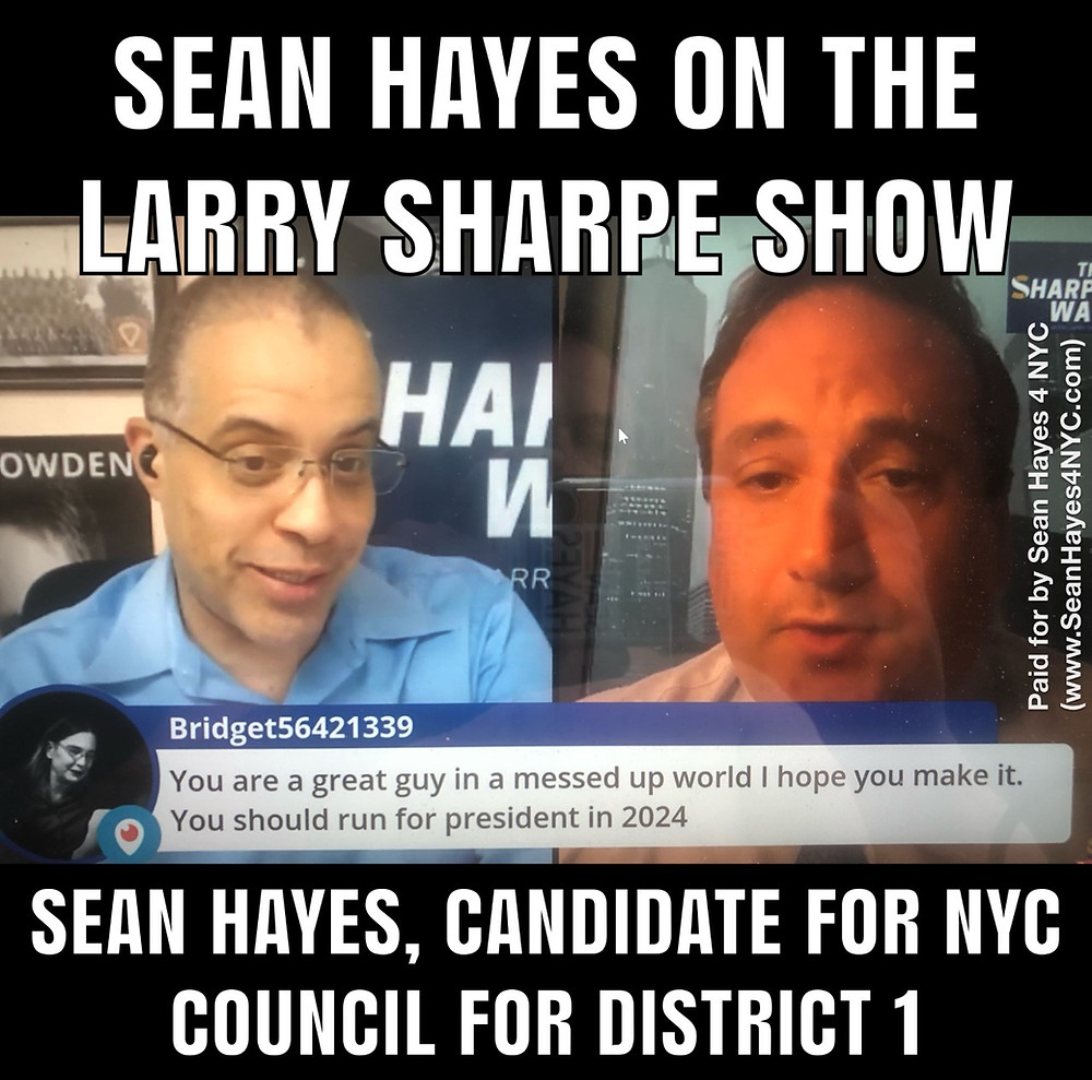 Sean Hayes 4 NYC Council in District 1