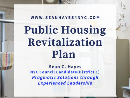 Public Housing Revitalization Program by Sean Hayes a District 1 Candidate for NYC Council