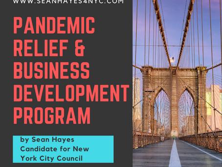 Pandemic Relief & Business Development Program