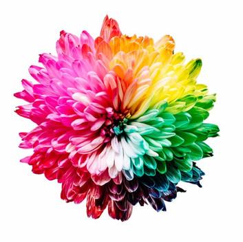 Los colores del arcoíris