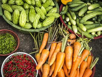 El origen de nuestros alimentos