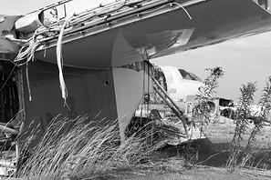 weeds grow around retired airplane, boneyard, black and white