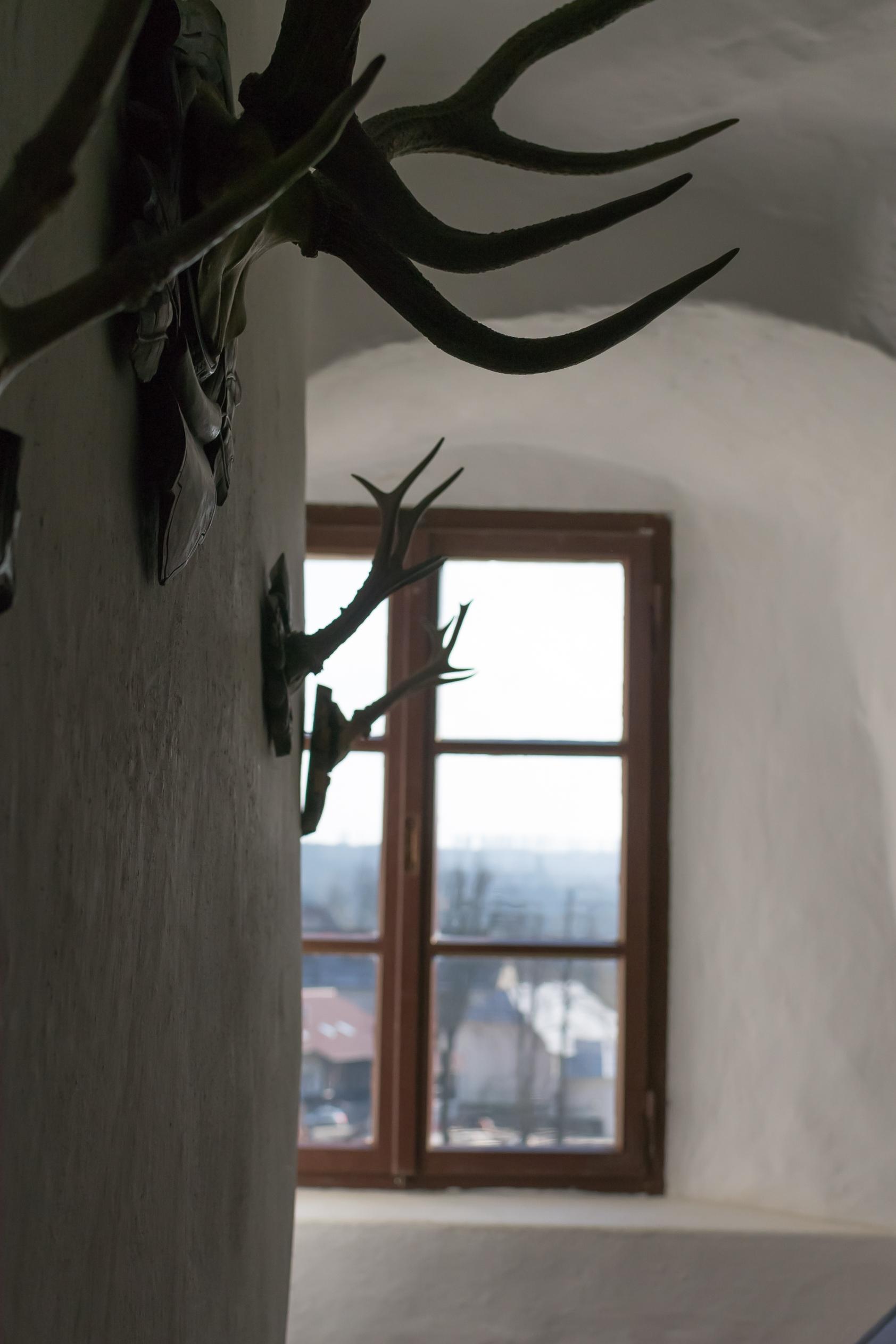 Royal Elk, castle interior