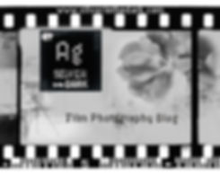 Silver in the Dark Film Strip Logo-1.jpg