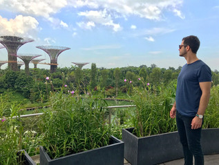 THE ULTIMATE TRIP TO SINGAPORE