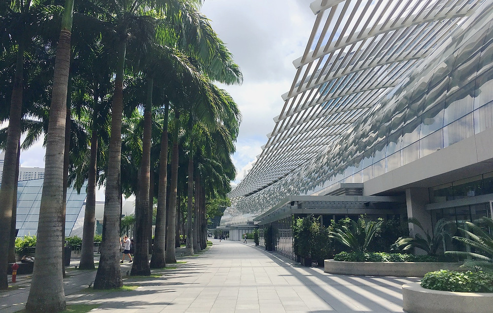Marina Bay Sands - Palms