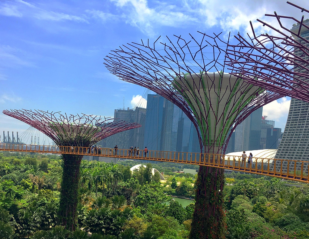 Gardens by the bay bridge