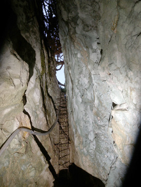 Vorderkarhöhle
