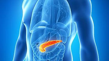 one-gram-pancreas-fat-reverse-type-2-dia