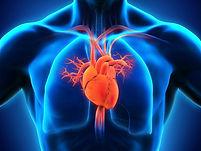 heart-health-xray-person.jpg
