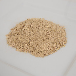 Qist Al-Bahri Powder (Sea Incense) 100g