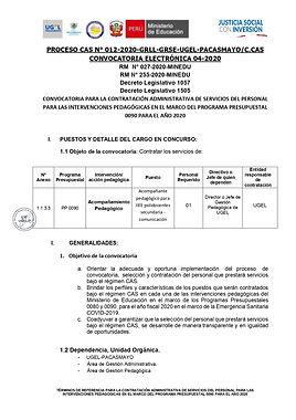 TDR CAS 012 - 2020 - 4TA CONVOC. ELECTRO