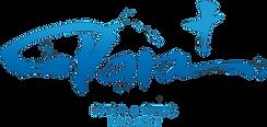 PARA+ logosカラー.png