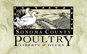 A picture of the Sonoma Country Poultry Logo.