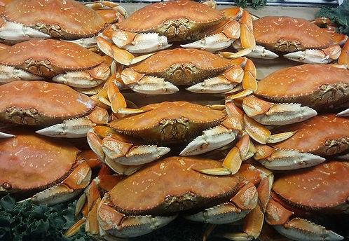 Local Crab.jpg
