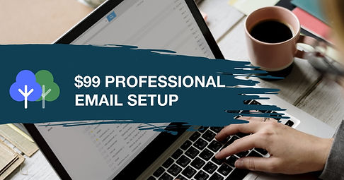 Professional Email Setup.jpg