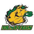 Stangs Logo.jpg