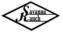 Diamond Savanna Logo.jpg
