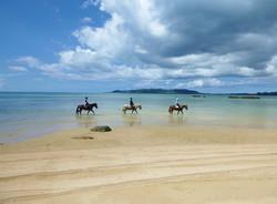 最高の景色の名蔵湾