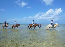 初心者から上級者まで楽しめるビーチ乗馬