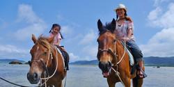 お子様と一緒に楽しめる引き馬コース