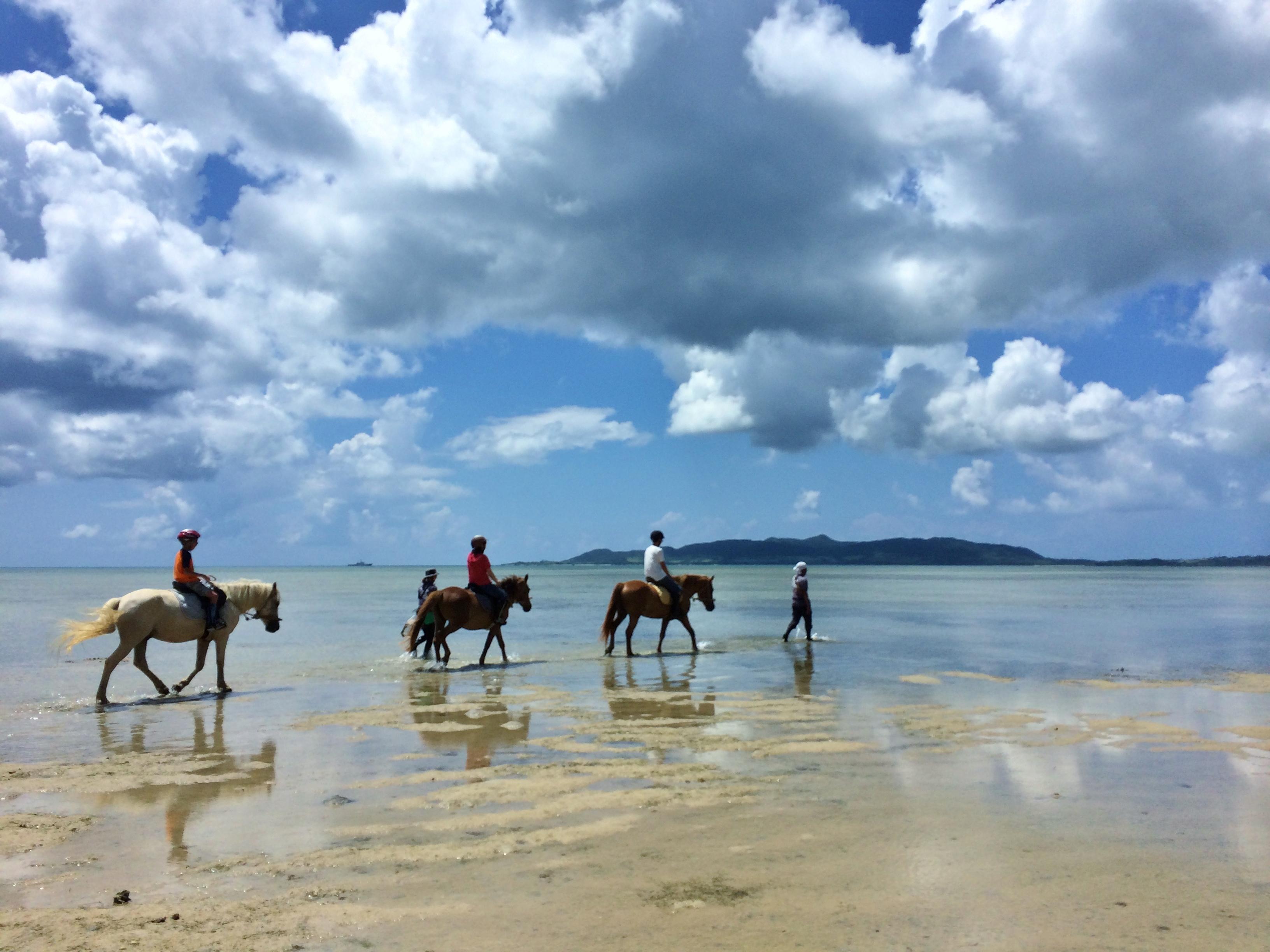 石垣島の海で、乗馬しよう!