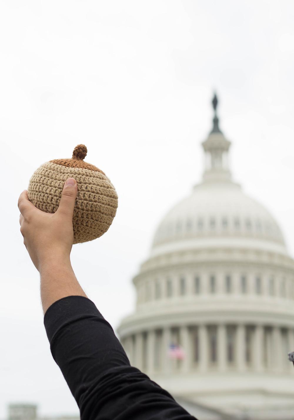 breastfeeding boob capital hill normalize breastfeeding Washington DC