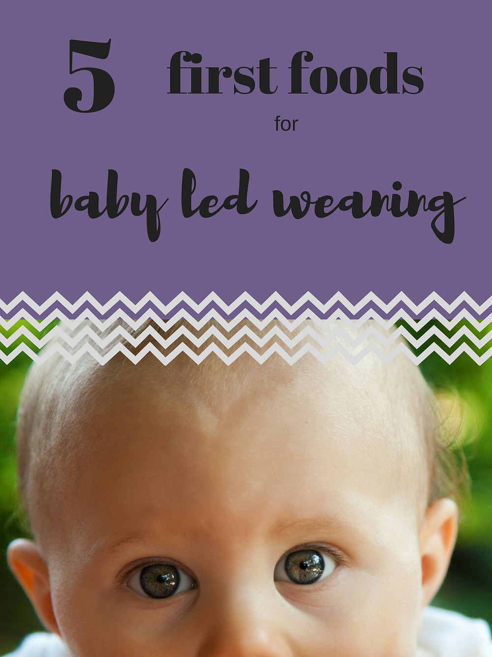 baby led weaning first food baby eating breastfeeding