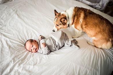 Wichita Falls Texas Newborn Photographer