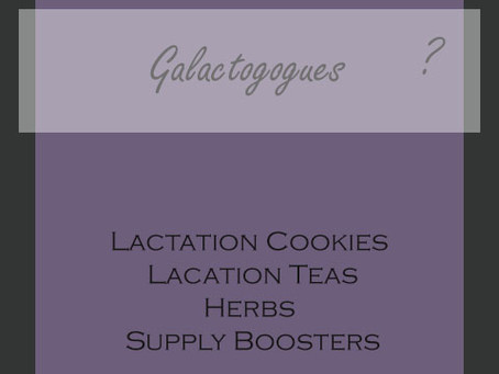 Making More Milk: Lactation Cookies, Lactation Teas