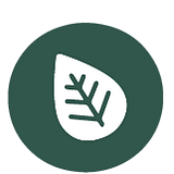 ECO_LOGO.png
