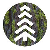 Mossy Earth.jpg