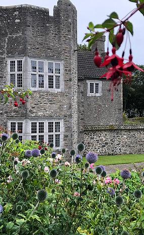 Castle thru flowers Sass 2020.jpeg