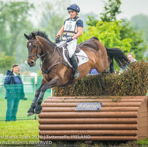 Tattersalls International 2018