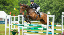 Event Report: Houghton International